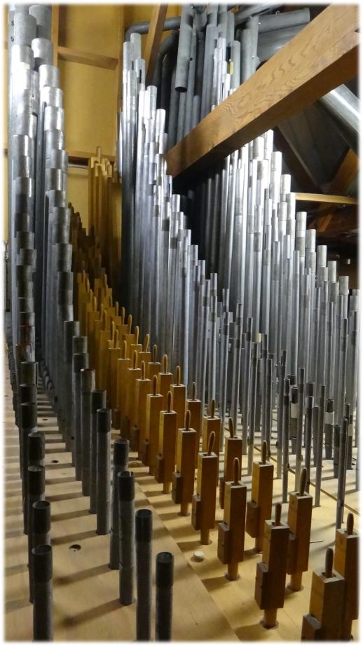 organpipes2